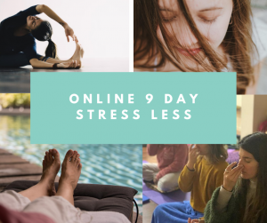 online-9-day-stress-less-300x251